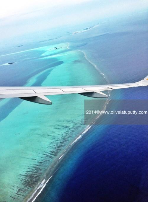 bulan madu di Maldives