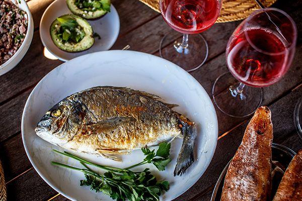 fish&wine-(4)