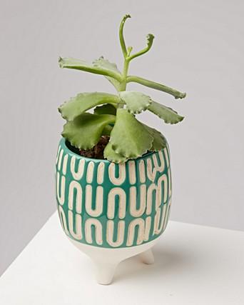 Yucca Footed Ceramic Plant Pots Oliver Bonas
