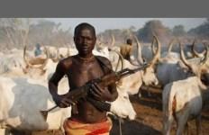 evolution of the fulani herdsman