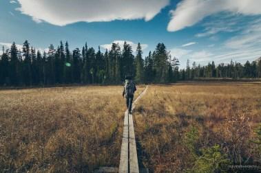 norvege suede voyage photographie roadtrip 2016 10 08049