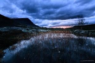 norvege suede voyage photographie roadtrip 2016 10 08294