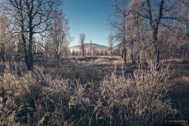 norvege suede voyage photographie roadtrip 2016 10 08760
