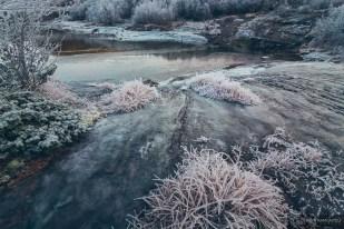 norvege suede voyage photographie roadtrip 2016 10 09491