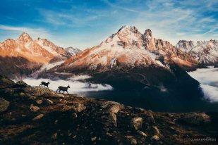 photo paysage montagne lac blanc chamonix 2015 09 34298 1200px
