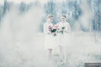 photographies fleurs