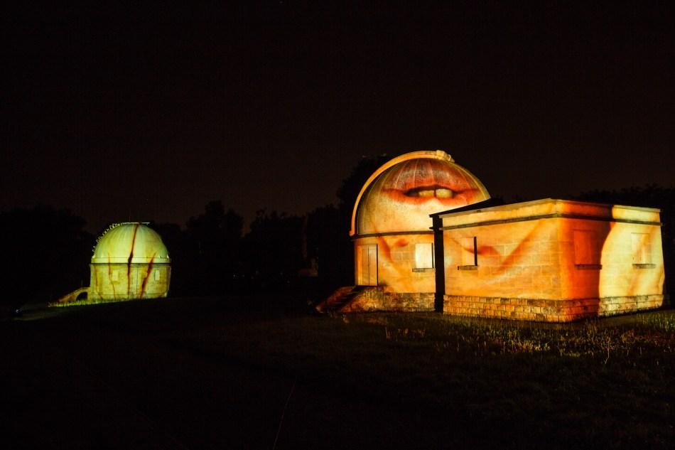 Invasion-observatoire de floirac-ME2A2800