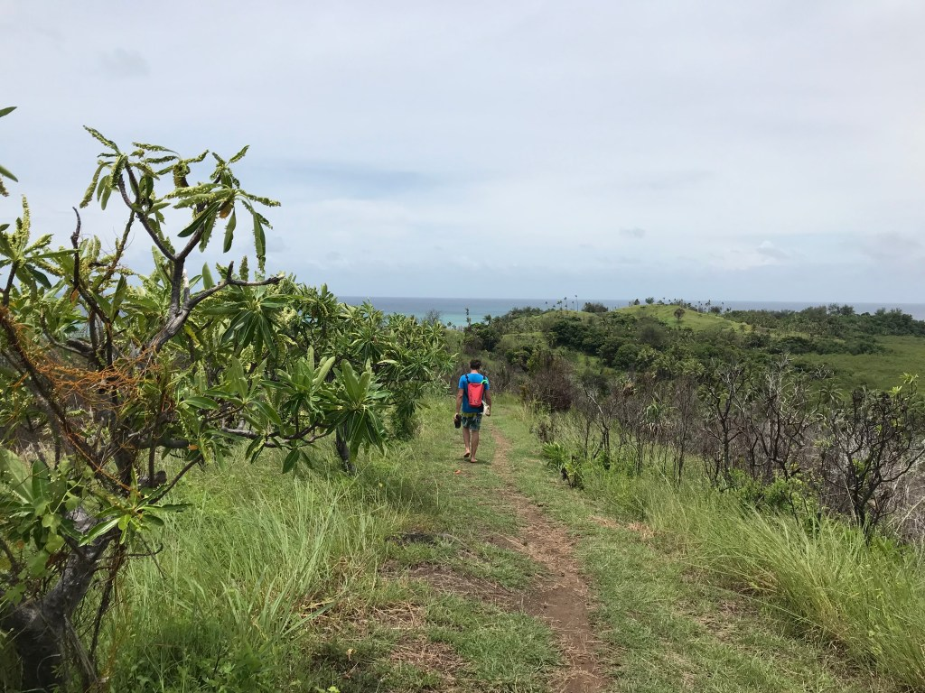 Trail to Blue Lagoon - Fiji