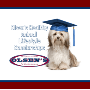 Olsen's Healthy Animal Lifestyle Scholarship Program
