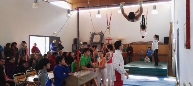 Resultado 2ª Jornada Juegos Deportivos de Navarra- Gimnasia Masculina-Polideportivo de Arazuri