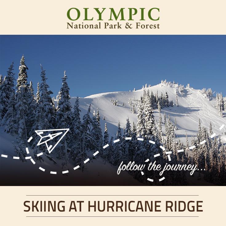 Skiing Amp Snowboarding At Hurricane Ridge Olympic National Park Amp Forest WA