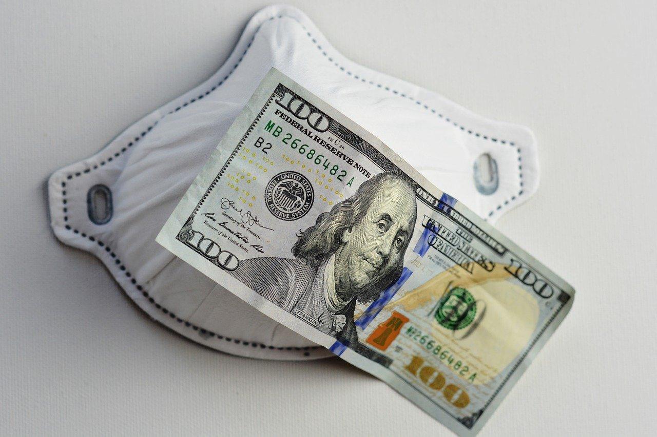 PPP money used for web developer