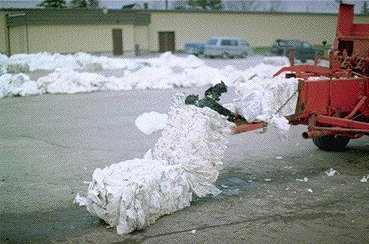 Figure 2. Small square bale of plastic, and plastic windrows in background (bale 2.5' long, weight 35 to 45 pounds).