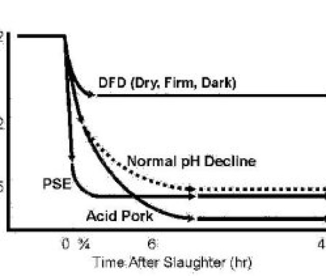 Figure 1 The Relationship Between Post Mortem Changes In Muscle Ph And Pork Quality