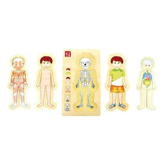 Drevené puzzle Anatómia chlapec - Oma & Luj