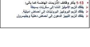 ملخص درس الهضم 8-1 لمادة العلوم الصف التاسع الفصل الثاني
