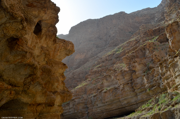 wadi-shab-1