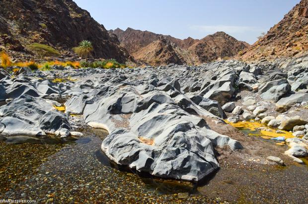 Wadi Al Abyad (4)
