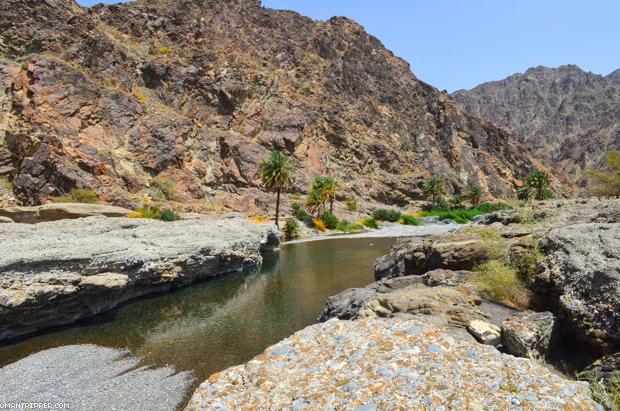 Wadi Al Abyad (7)