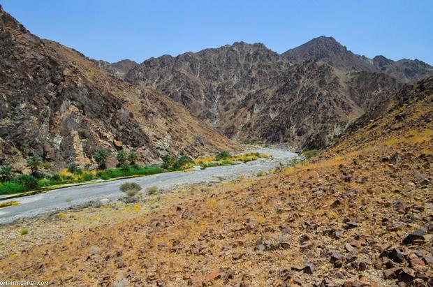 Wadi Al Abyad (8)