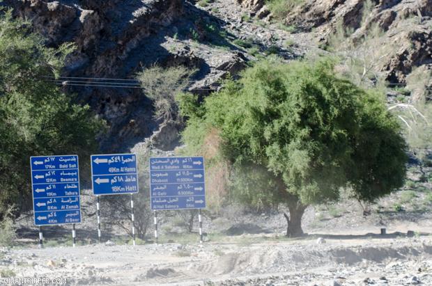 Wadi Bani Awuf (6)