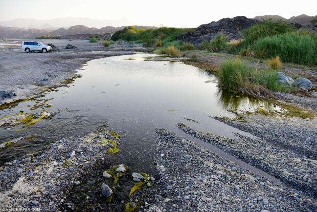 Wadi Al Khoudh (4)
