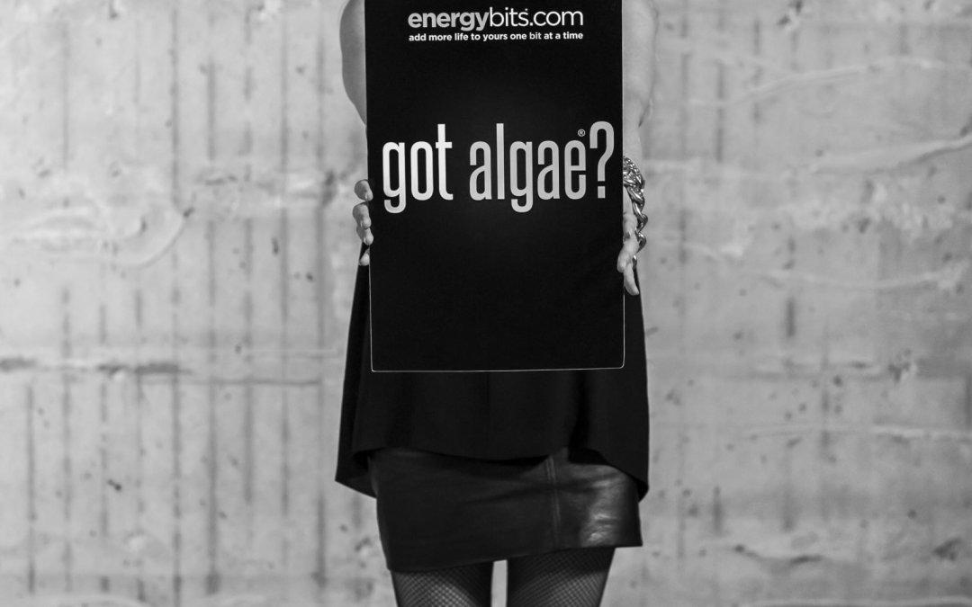 How to Use Algae to Burn Fat!