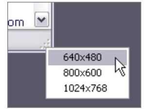 SIZER,把程式視窗快速變更成指定的大小