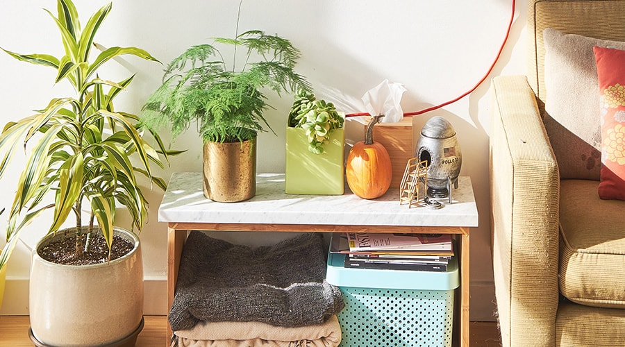 maison relaxante potager intérieur pour détente