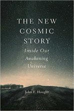 The New Cosmic Story by John F Haught