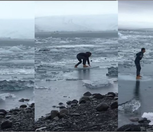 Tourist In Iceland