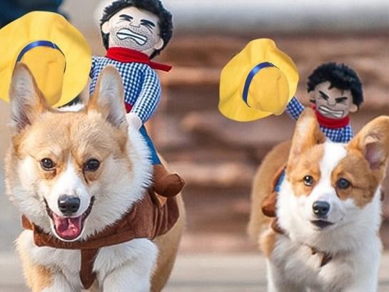 Funny Cowboy Themed Halloween Dog Costume