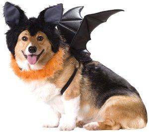 Animal Planet Bat Dog Costume
