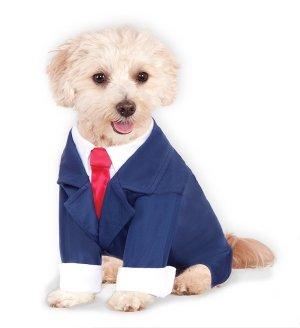 Doggie Business Suit
