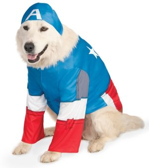 Captain America Big Dog Costume