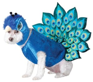Animal Planet Peacock Dog Costume