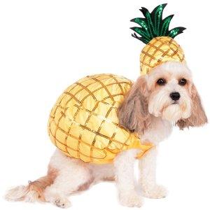 Pineapple Pet Costume