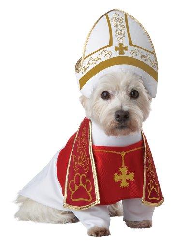 Holy Hound Pope Dog Costume