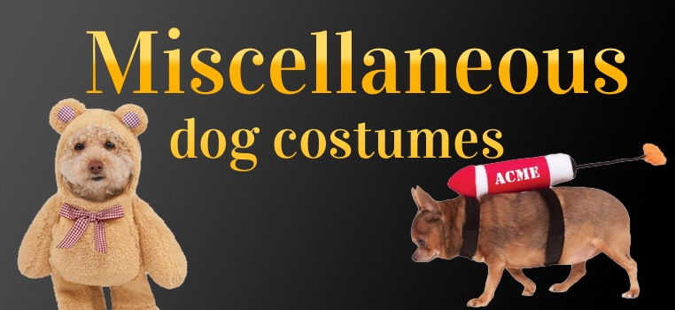 Miscellaneous Dog Costumes
