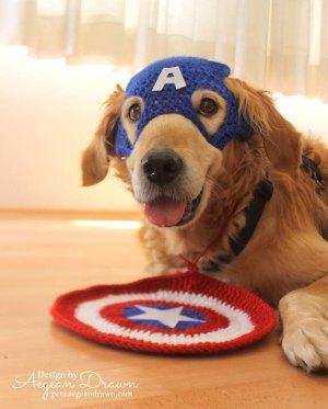 Super Hero Dog Costume
