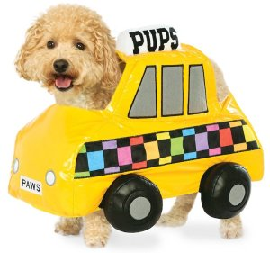 NYC Taxi Cab Pet Costume