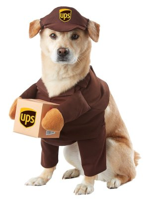UPS Delivery Dog Costume