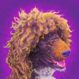 Poodle Custom Pet Portrait