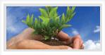 Open Access Environmental Journals