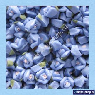 roos-blauw-5-mm