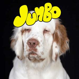 jumbo album