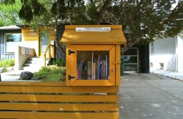 Little Free Library: Saskatoon chapter