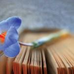 La medicina narrativa comunicazione libro