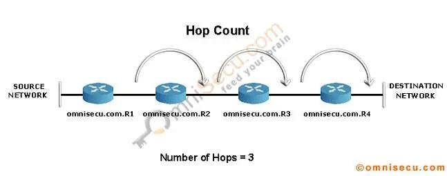 RIP Hop Count