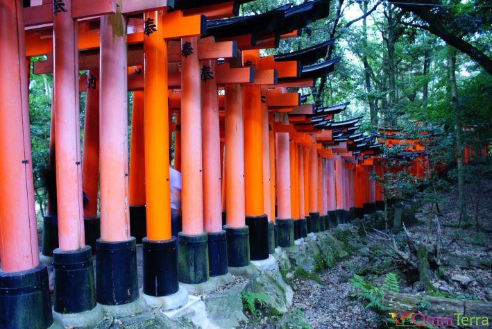 Japon - Kyoto - Sanctuaire Fushimi Inari Taisha - Arches - Extérieur